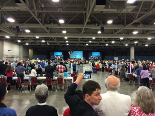 The House of Deputies at General Convention 2015